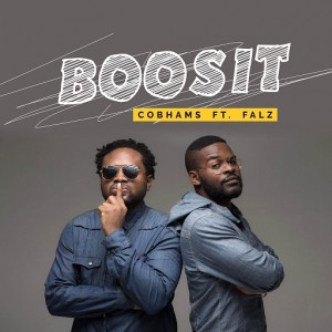 boosit-Cobhams